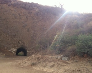 Bat caves anyone?